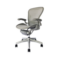 Aeron-Chair-Lumbar-Basic-Titanium (1)