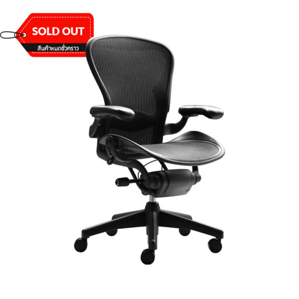 Aeron-Chair-Semi-Full-Adjustable-Herman-Miller_Sold-Out